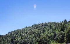 Palomar Mountain