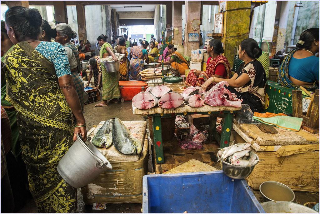 Women in the fish market puducherry tamilnadu india for White fish market