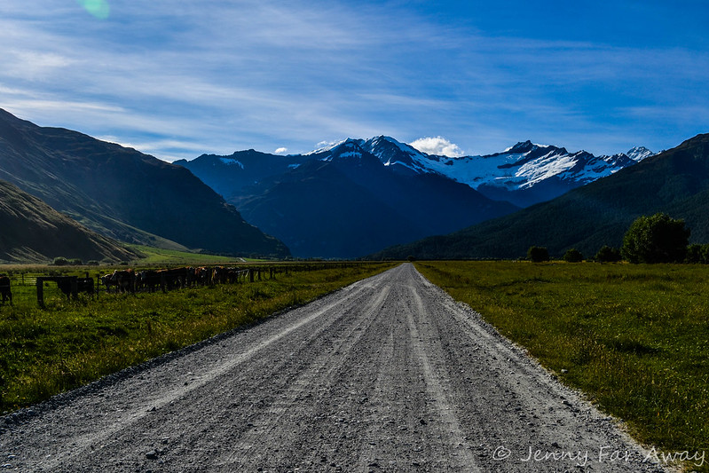 The road to the Rob Roy Glacier walk.