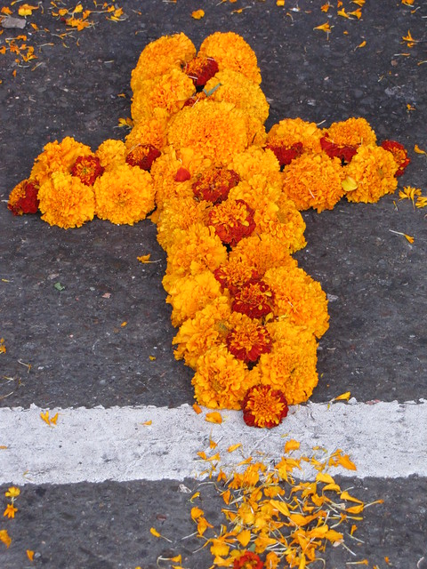 Day of the Dead Marigold Flowers | Flickr - Photo Sharing!