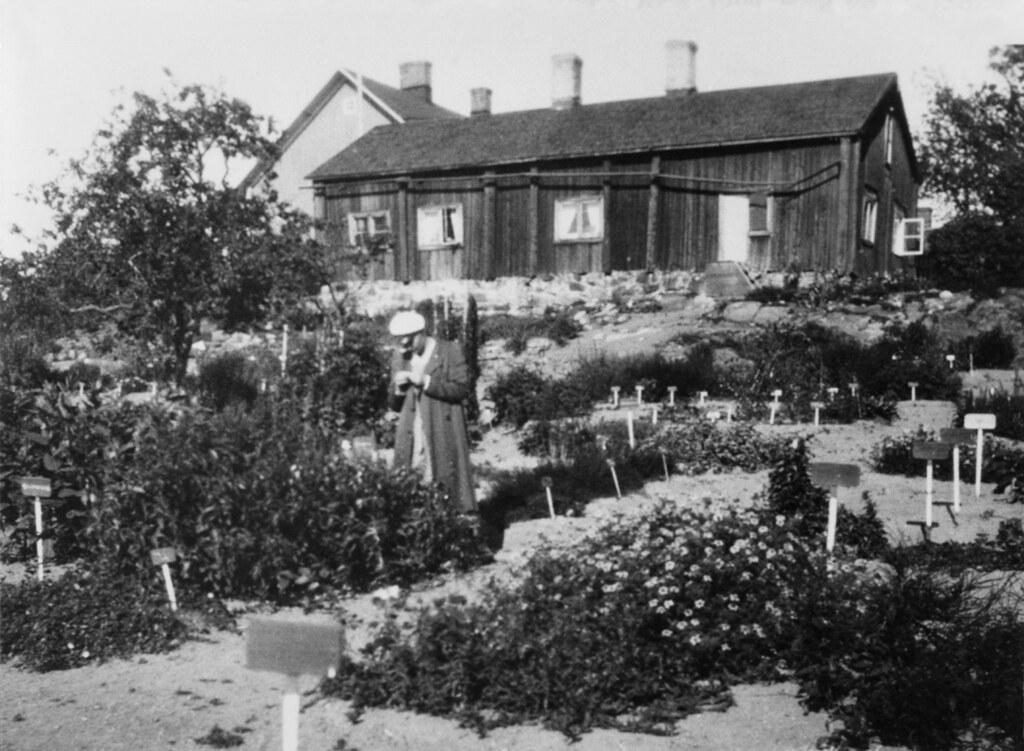Turun Yliopiston kasvitieteellinen puutarha Iso-Heikkiläss… | Flickr