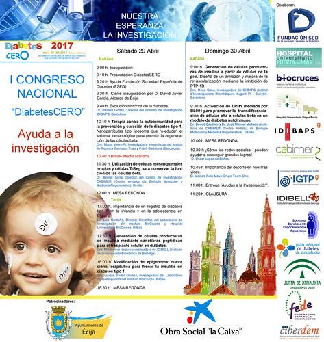 AionSur 32663548094_c15151f8b4_d El I Congreso Nacional DiabetesCERO impulsará la investigación Asociaciones