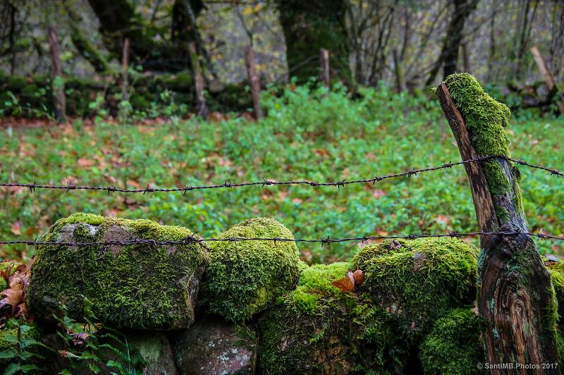 Alambrada en el sendero de la Cascada de Xorroxin
