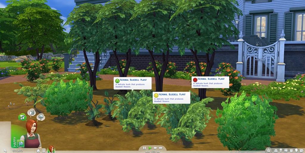 Sims  Island Paradise Jobs