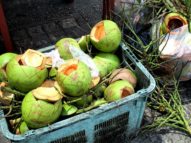 Coconut husks, freshly cut