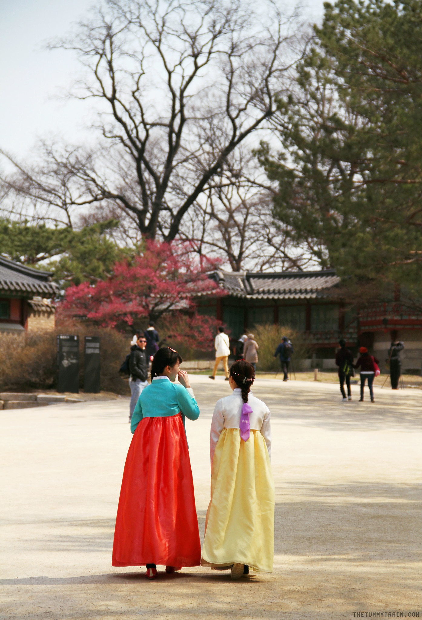 33489205726 ddcf11afdb k - Seoul-ful Spring 2016: Greeting the first blooms at Changdeokgung Palace