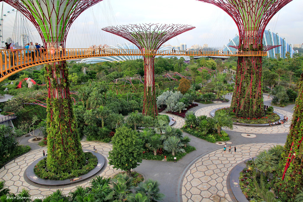 Flower cloud forest domes supertrees grove aerial boar flickr - Garden by the bay flower show ...