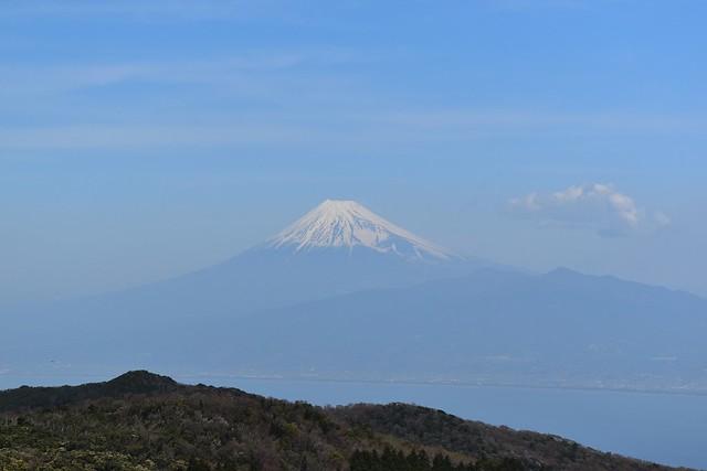 金冠山からの富士山