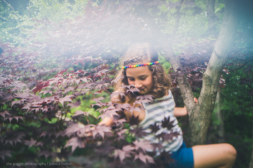 In a Tree | Freelensing