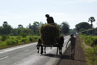 Traffic, Cambodia | by The Hungry Cyclist