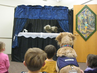 Our Time with Beamish the therapy dog | by Neenah Public Library