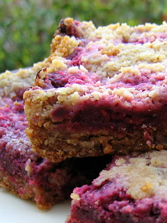 RASPBERRY CRUMB BREAKFAST BARS | by Cathy Chaplin | GastronomyBlog.com