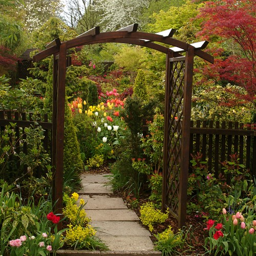 Our genoa arch spring flickr photo sharing for Gardening 4 all seasons