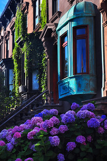 Brownstone Neighborhood | by Bill Gracey