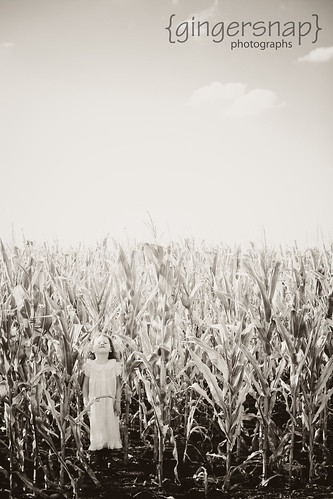 corn2 | by aeskelte25