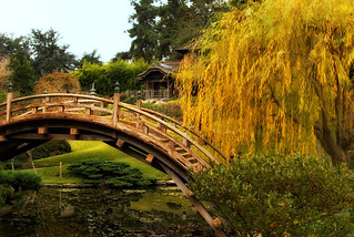 Huntington Library - Japanese Garden | by Mr Gold