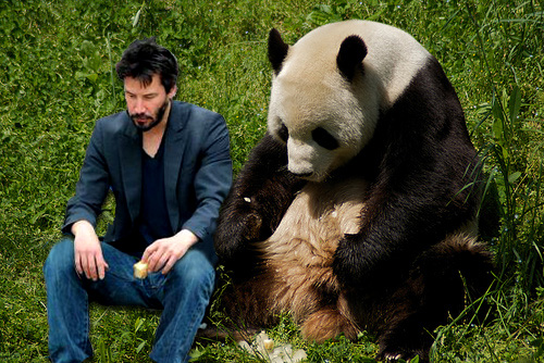 Sad Keanu and Sad Panda :( | by SevenLittleThings
