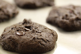 Carob chocolate chip cookies with coconut and cranberries | by Gudlyf