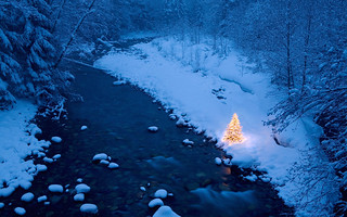 Illuminated Christmas tree beside a creek in a snow covered forest at dusk, Cascade Mountains, Washington, USA | by joseph.vernagallo