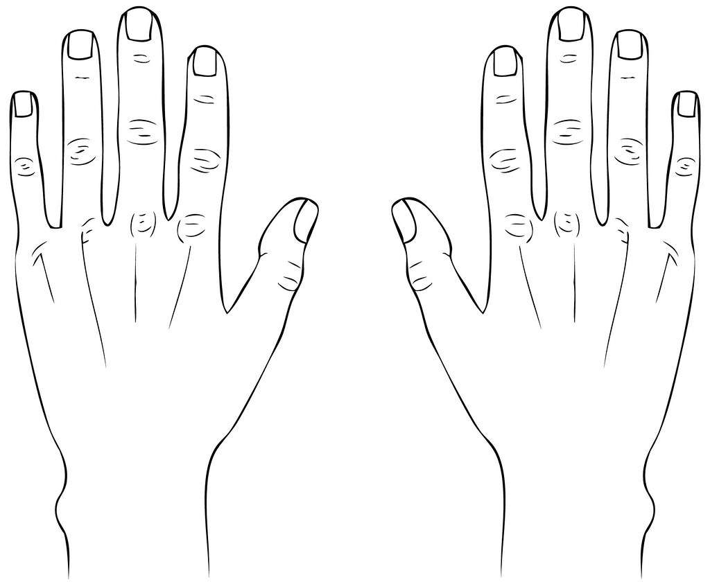 D Line Drawing Of Hand : Hands line drawing gabriella bocchetti flickr