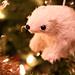 December 19: Peanut's Polar Bear