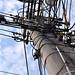 電線桿 Utility pole