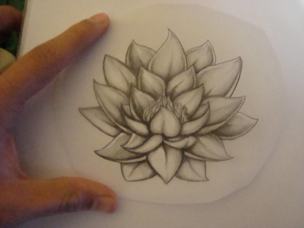 flor de loto flor de loto sobre papel mantequilla para. Black Bedroom Furniture Sets. Home Design Ideas