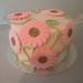 Pink Daisy's