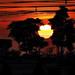 Sundown Thailand