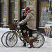 Snowstorm Sociable - Winter Cycling in Copenhagen