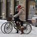 Snowstorm Sociable - Winter Cycling in Copenhagen