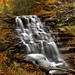 Going 'shopping at Erie Falls - Ricketts Glen State Park