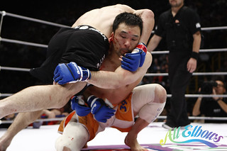 Sakuraba's ear rips | by Esther Lin • all elbows
