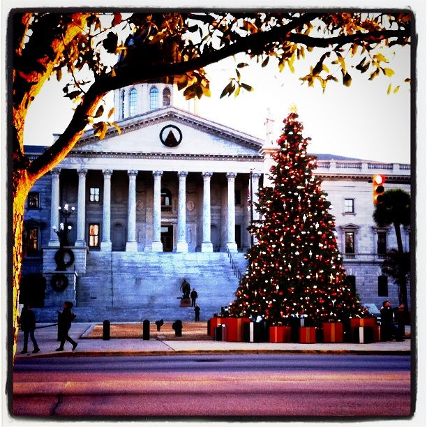 Columbia Christmas Tree: Christmas Tree At SC State House