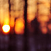 bokeh sunrise