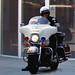 LAPD motor officer