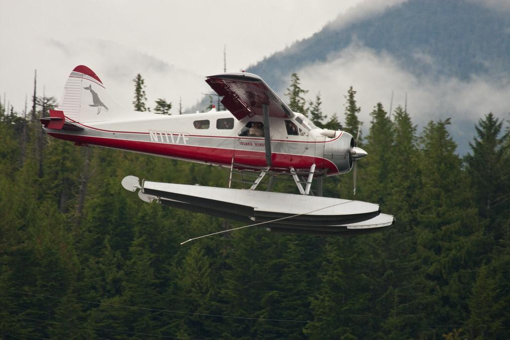 Alaska Bush Plane De Haviland Beaver Floatplane This