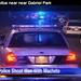 Portland police shooting