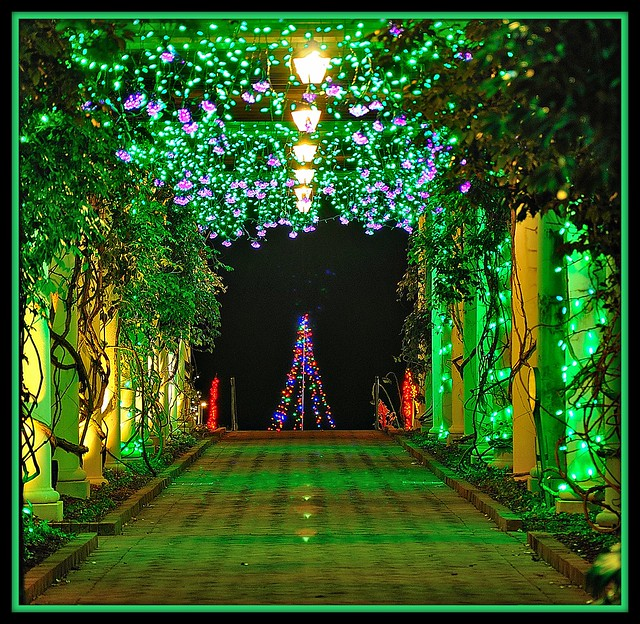 Daniel stowe botanical garden flickr photo sharing - Daniel stowe botanical garden christmas ...