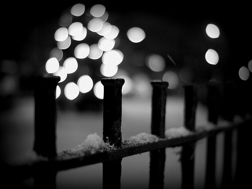 Let it Snow Fence | by Kirstin Mckee