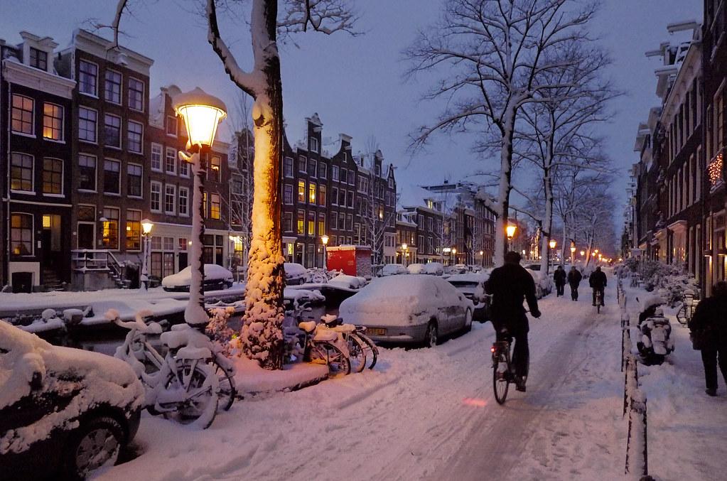 Dutch to hindi translation-9461