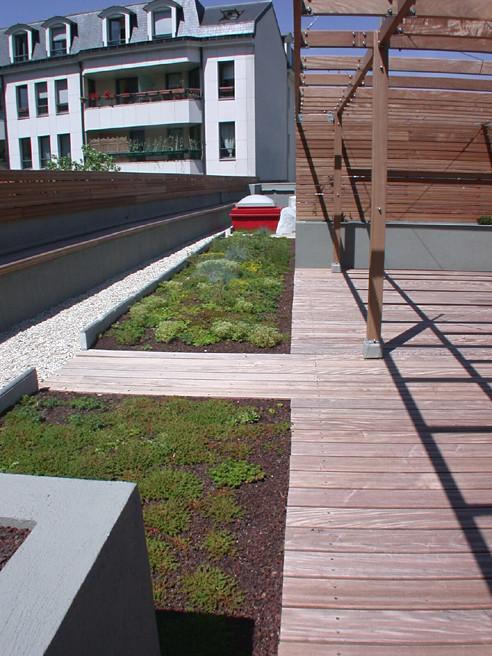 Toiture Terrasse Végétalisée Poids : Toiture terrasse v u00e9g u00e9talis u00e9e (TTV) Siplast con u00e7oit