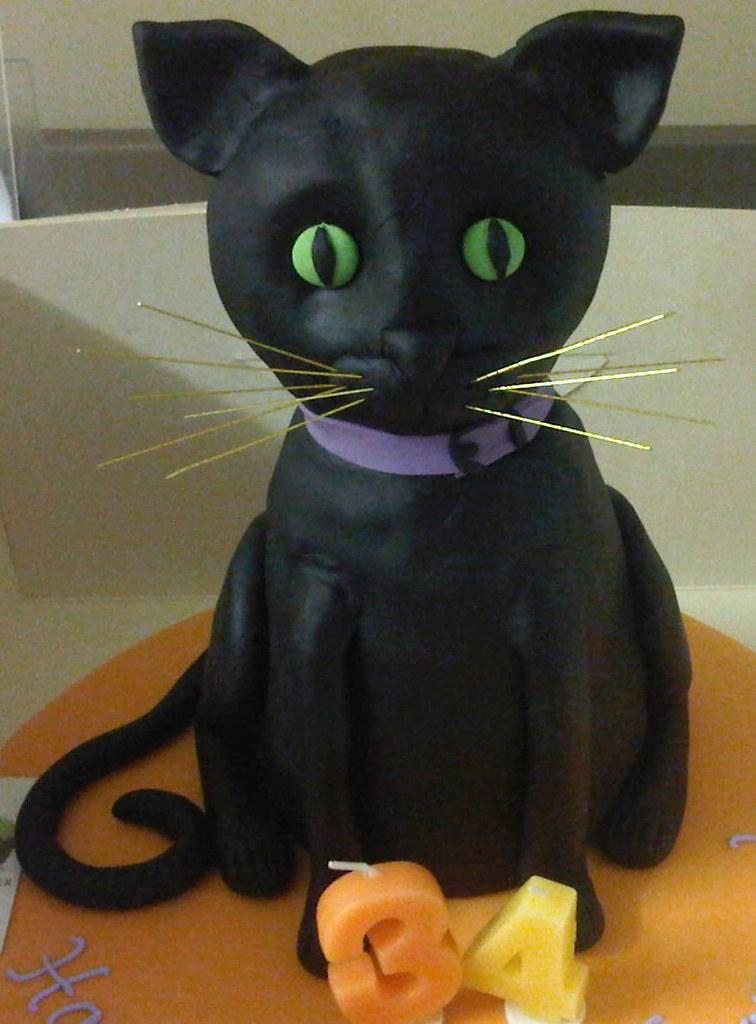 Cat Cake Jill Chant Flickr