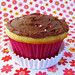 Yellow Cupcakes with Strawberry Jam filling and Fudge Frosting
