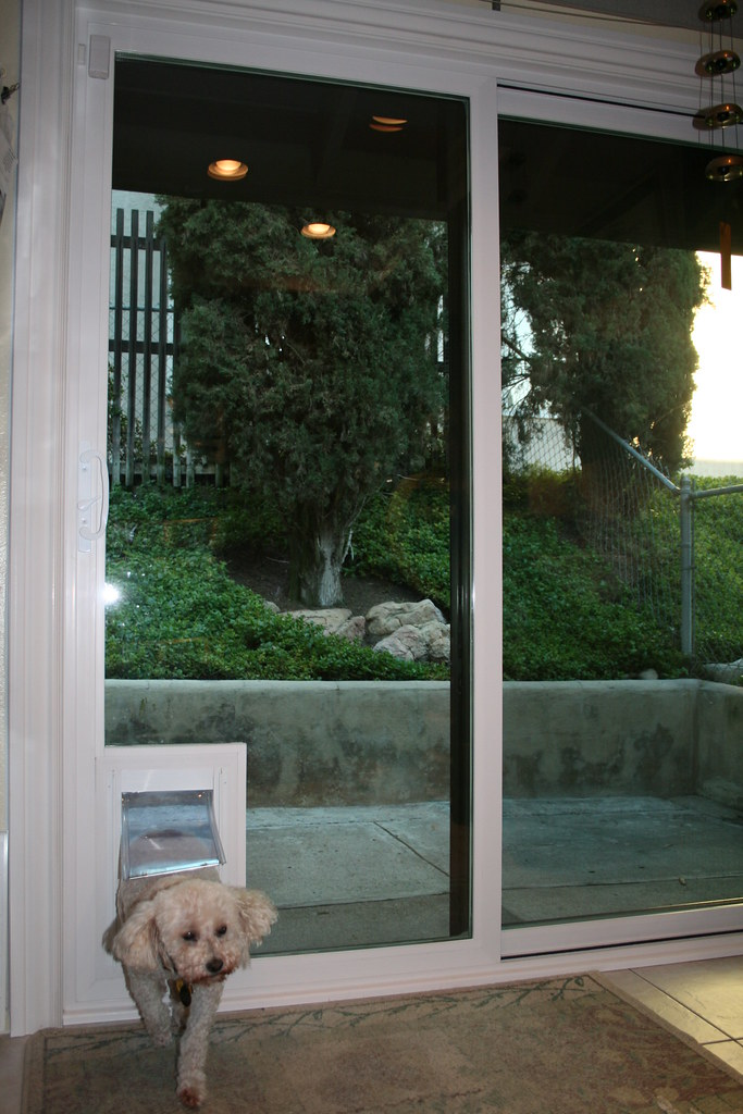 sliding glass door with built in doggie door