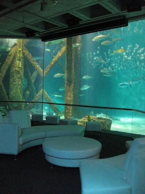 Audubon Aquarium Of The Americas Flickr Photo Sharing