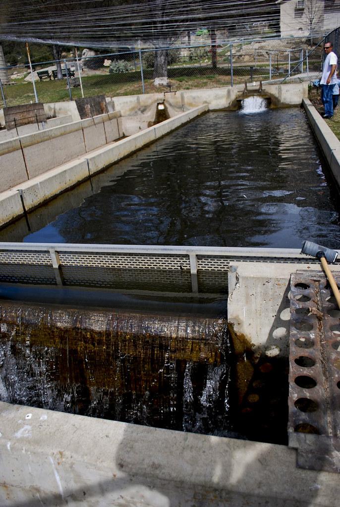 Kern River Fish Hatchery