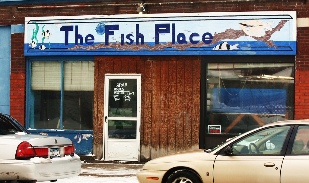 The fish place north tonawanda new york stephanie for The fish place