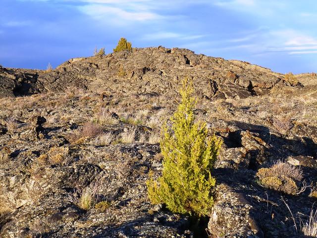 lava landscape flickr photo sharing. Black Bedroom Furniture Sets. Home Design Ideas