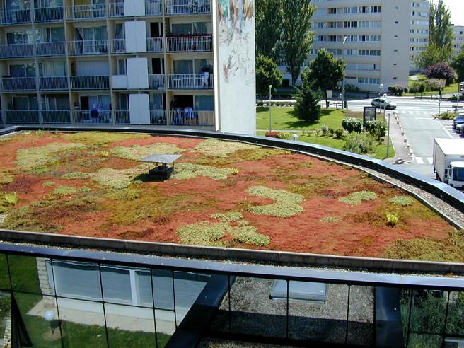 Toiture Terrasse Végétalisée Siplast : Toiture terrasse v u00e9g u00e9talis u00e9e (TTV) Siplast con u00e7oit
